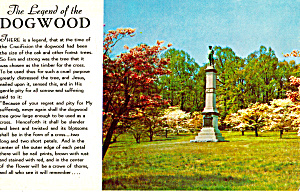 Legend of the Dogwood p29413 (Image1)