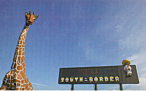 Pedros Giraffe South Of The Border Postcard P29497