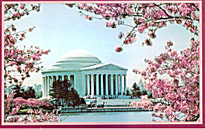 Jefferson Memorial Washington Dc Cherry Blossom Time P29515