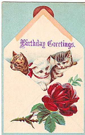 Three Kittens on Vintage Birthday Card p29611 (Image1)