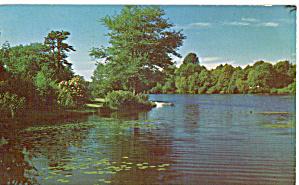 Lake View in Mayville NY p29821 (Image1)