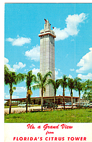 Citrus Observation Tower Clermont  FL p29843 (Image1)