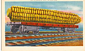 Ear of Corn on a Railroad Car Postcard p29847 (Image1)