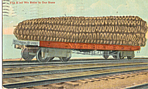 Ear of Corn on a Railroad Car 1912 Postcard p29849 (Image1)