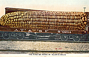 Ear of Corn on a Railroad Car Postcard p29855 (Image1)