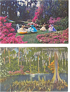Cypress Gardens Fl Postcard P2985 Lot Of 2