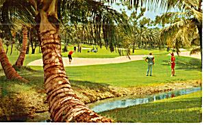 Dorado Beach Golf Course  Dorado Puerto Rico p29963 (Image1)