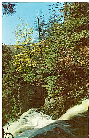 Top of Bushkill Falls, Bushkill PA (Image1)