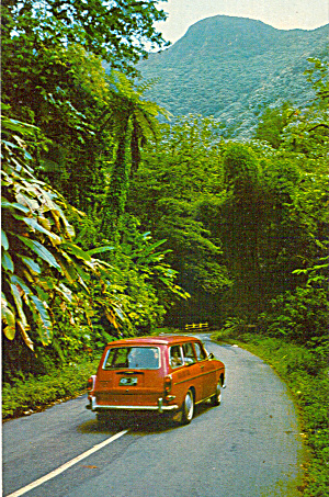 El Yunque Rain Forest Puerto Rico p30027 (Image1)