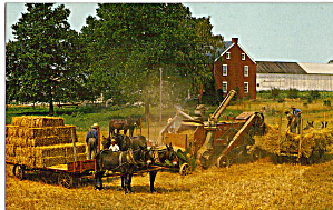 Amish Threshing Scene Postcard p30085 (Image1)