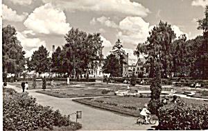 Szczacinek Poland Fragment paru (Image1)