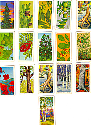 Red Rose Tea TreesTrading Cards Partial Set (Image1)
