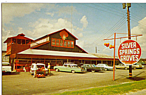 Silver Springs Groves Citra FL Citrus Retail Store p30128 (Image1)