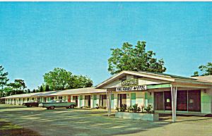 Pine Forest Motel, Yulee, FL Postcard p30200 (Image1)
