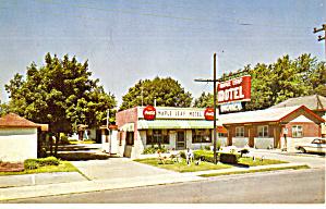 Maple Leaf Motel Niagara Falls Ontario Canada p30235 (Image1)