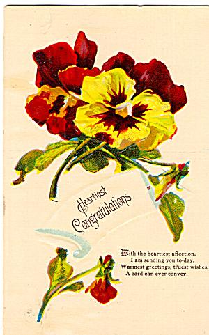 Congratulatory Postcard with Pansies p30265 (Image1)