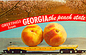 Biggest Peaches You Ever Saw Postcard p30270 (Image1)