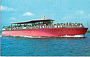 Capt George Sinn s Big Flamingo p30298 (Image1)
