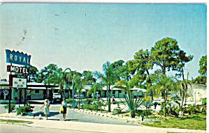 Royal Motel Sarasota FL Postcard p30300 (Image1)