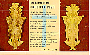 Legend of The Crucifix Fish (Image1)