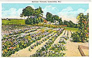Barrose Terrace Lancaster PA p30500 (Image1)