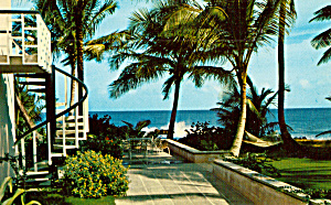 Dorado Beach Hotel And Golf Club Dorado Puerto Rico P30794