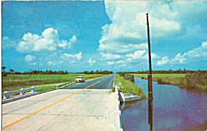 Along The Tamiami Trail Florida p30821 (Image1)