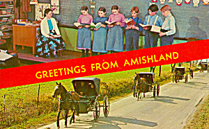Amish School Room and Buggys Postcard p30868 (Image1)