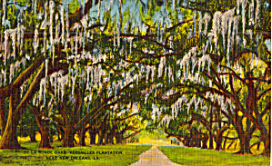 Le Ronde Oaks, Versailles Plantation, Near New Orleans,Louisiana (Image1)