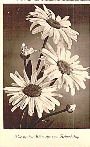 Vintage German Birthday Wishes Postcard Flower Motif (Image1)