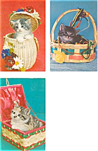 Kittens In Baskets Postcard Lot 8 P3097