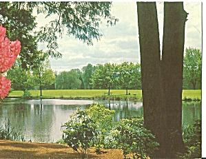 Portland, Oregon. Eastmoreland Park (Image1)