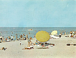 Lake Michigan Beach Scene (Image1)