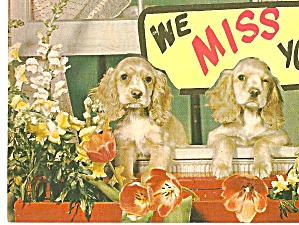 Advertising Weaver Book Store Lancaster PA Postcard p31024 (Image1)