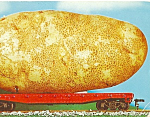 Large Potato on a Railroad Car Postcard p31038 (Image1)