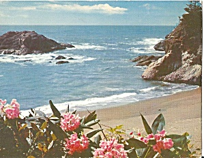 Oregon Coast, Rhododendron and the Pacific Ocean (Image1)