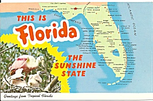 State Map Of Florida P31198