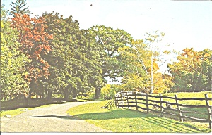 Country Road In Autumn Postcard P31229