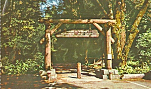 Gateway to Muir Woods National Monument, California (Image1)