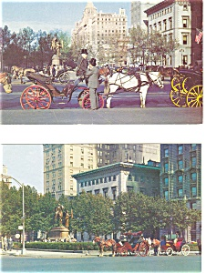 Hansom Cabs in Central Park New York City Postcards Lot 2 p3146 (Image1)