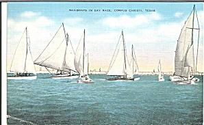 Sailboat Race in Bay Corpus Christi Texas p31474 (Image1)