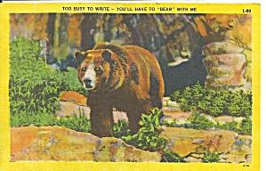 Brown Bear saying too busy to write Postcard p31531 (Image1)