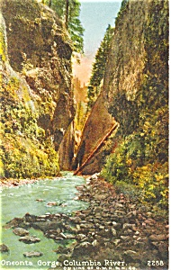 Oneonta Gorge Columbia River Postcard (Image1)