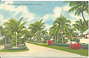 Golden Beach, Florida Parkway And Palms
