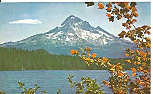 Mt Hood Oregon p31651 (Image1)