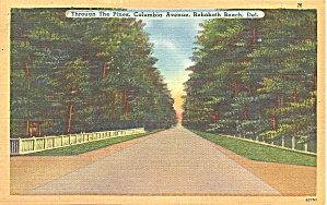 Rehoboth Beach, Delaware,Columbia Avenue (Image1)