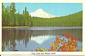 Mt Hood Oregon Frog Lake and Mount Hood p31702 (Image1)