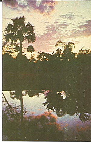Lovely Florida Sunset Postcard p31726 (Image1)