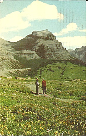 Glacier National Park, Montana, Logan Pass (Image1)