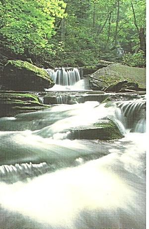 Waterfall View Isaiah 44:3 on reverse p31737 (Image1)